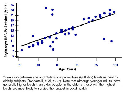 Glutathione and Longevity