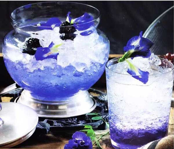 clitoria ternatea tea blue butterfly pea tea drink